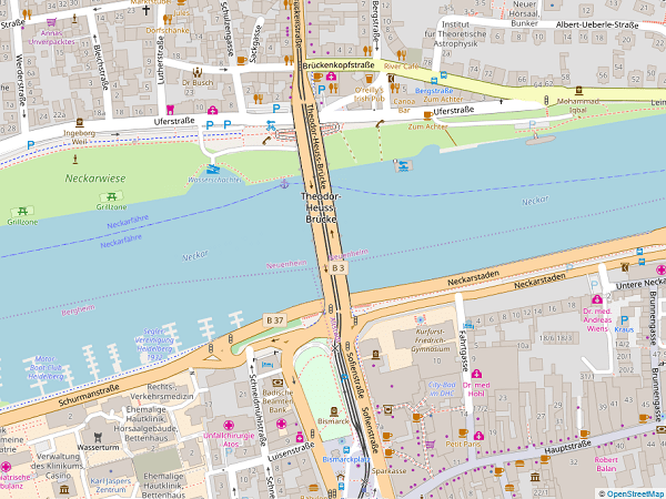 オープンストリートマップ-テオドアホイス橋周辺地図