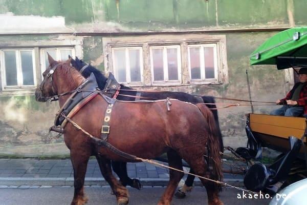 ローテンブルク 馬車